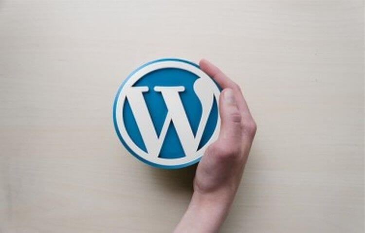 Issues That Are making A Dent In The Reputation Of WordPress