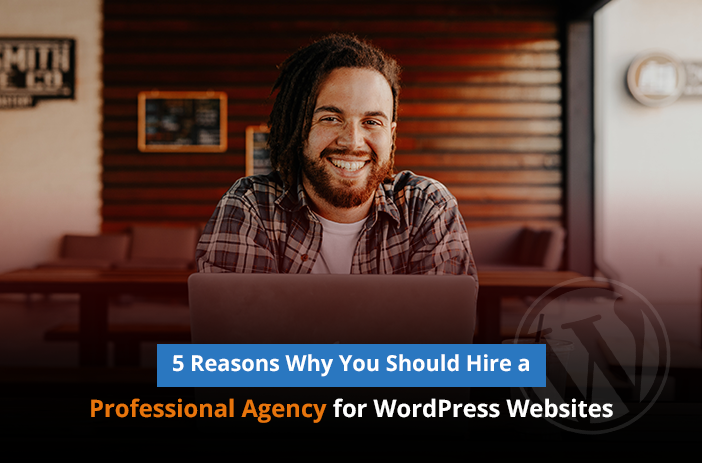 5 Reasons Why You Should Hire a Professional Agency for WordPress Websites
