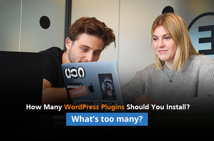 How Many WordPress Plugins Should You Install? What Number is Too Many?